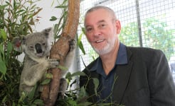 Professor Peter Timms announces first successful field trial of a vaccine against chlamydia in koalas. Images taken at Endeavour Veterinary Ecology clinic at Toorbul by Terry Walsh on 29 October 2014.