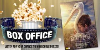 5mu box office storm boy