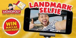 landmark selfie banner