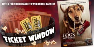 power ticket window dogs way