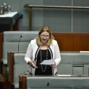 Rebekha Sharkie in Parliament supplied