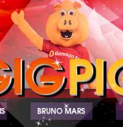 SlideGigPig Star1019 logo1