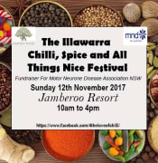 The Illawarra Chilli, Spice and All Things Nice Festival