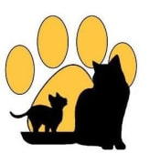 just cats logo
