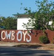Cowboys fence.PNG