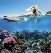 800px-Reef_Snorkelling_on_the_Great_Barrier_Reef.jpg