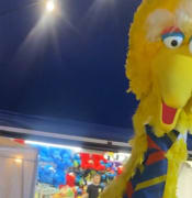 19 Apr Big Bird SA Police