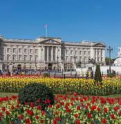 Buckingham_Palace_edit.jpg