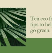 Ten eco friendly tips to help you go green