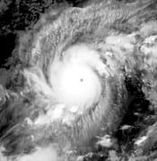 typhhon goni