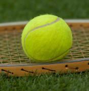 tennis-ball-1162640_960_720.jpg
