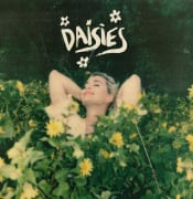 DAISIES-Art.jpg