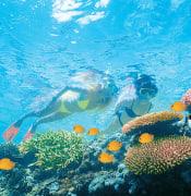 Great_Barrier_Reef_2.jpeg