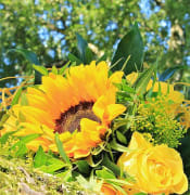bouquet-bouquet-flowers-roses-flowers.jpg