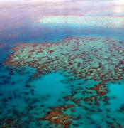 great-barrier-reef-261720_640.jpg