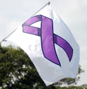 rsz_dv_purple_flag.jpg