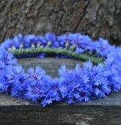 wreath-2633043_960_720.jpg