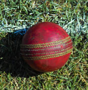 Used cricket ball