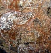 1200px Aboriginal Art Australia1