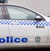 police car2