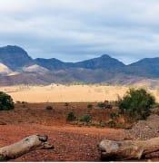 flinders national park