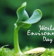world environment day 2017 5