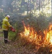hazard reduction fire 03