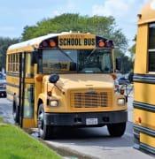 school buses 2801134 1920