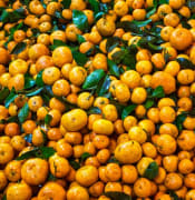 fresh-orange-fruits-3696413.jpg