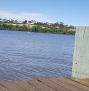 Murray River 1 (Claire) - Copy.jpg