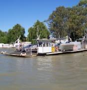 ferry mannum