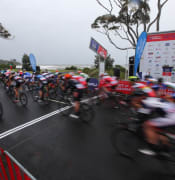 tour of tas action