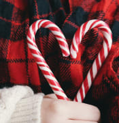 candies candy cane christmas 247076