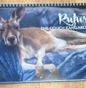 Rufus calander 1