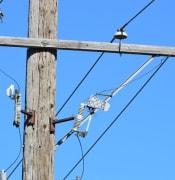 Power line.jpg