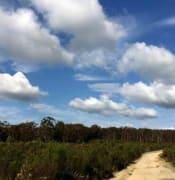 Woowookarung National Park Ballarat
