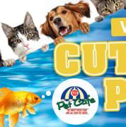NQL CNS S27 4CA Cutest Pet VOTE slider