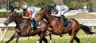 ITS-A-REALLY-EXCITING-TIME-FOR-THE-INDUSTRY-ADRIAN-BOTT-ON-OPPORTUNITY-TO-GET-YOUNG-PEOPLE-INVOLVED-IN-THE-BREEDING-AND-RACING-INDUSTRY.jpg
