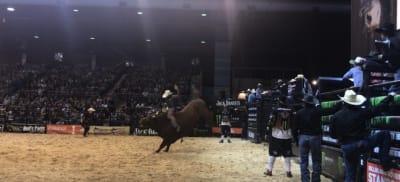hunter-bullriders-secure-place-in-pbr-australia-grand-final.jpg