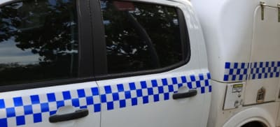 police_4_ds.jpg