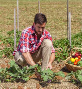farmers-at-the-heart-of-NSW-budget.jpg