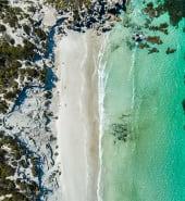 shutterstock 1056848198 kangaroo island