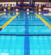 swimming_pool_lanes_edit.jpg