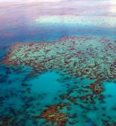 great-barrier-reef-261720_640.jpg