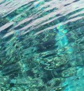 Great_Barrier_Reef_-Original.jpg