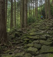 Japan - Trekking.jpg