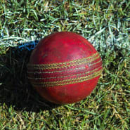 Used cricket ball