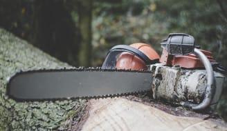 chainsaw 3655667 640