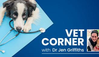 TAS HBA Tas Talks Vet Corner Jen Griffiths slider