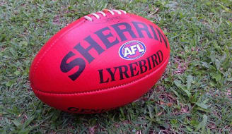 Sherrin Lyrebird Full Size ball taken 2014 3